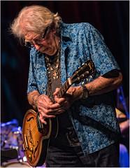 John Mayall (leonhucorne) Tags: mayall rock music blues anciennebelgique concert nikon d750 fullframe couleurs colors guitare