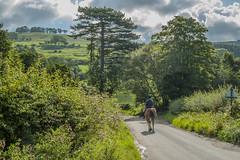 Hambleton Hills ...Yorkshire
