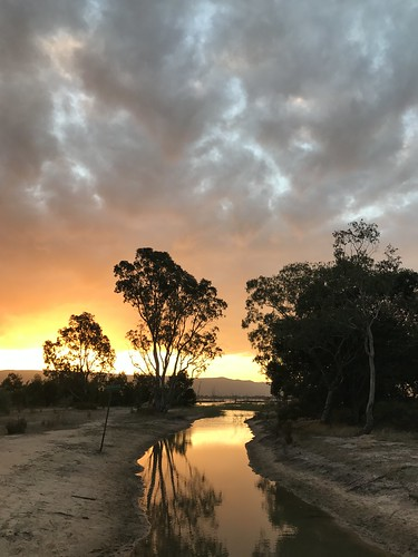 Lake Fyans sunset