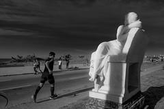 Maratón 42K Montevideo   170423-0000218-jikatu (jikatu) Tags: 162 42km carrasco gr jikatu marathon montevideo ricoh uruguay bw black white blackwhite monocrohme monocromo