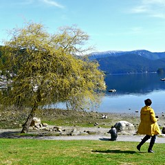 Photographers enjoying the photo-ops! (Trinimusic2008 - stay blessed) Tags: ocean family sea sky canada mountains tourism nature grass thanks vancouver reflections blessings march scenery colours bc cove ships scenic photographers northvancouver gratitude 2014 depcove trinimusic2008 judymeikle