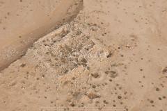 Qasr Mushash 2 Qasr (APAAME) Tags: jadis2713001 megaj7594 قصرمشاش exif:model=pentaxk100d exif:aperture=ƒ80 exif:make=pentax camera:make=pentax camera:model=pentaxk100d exif:isospeed=200 geocountry exif:lens=sigma exif:focallength=70mm aerialarchaeology aerialphotography middleeast airphoto archaeology ancienthistory
