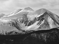 Mountain near Carcross
