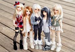 Group time! (Eludys) Tags: doll vampire chloe bjd fairyland celine msd mnf shushu minifee rheia