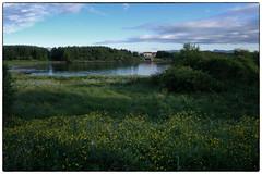 Bud: sommeren 2006 (Krogen) Tags: nature norway landscape norge natur norwegen olympus noruega bud scandinavia romsdal fræna krogen landskap noorwegen noreg skandinavia olympusc7070