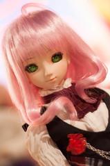 Senka in Pink (Aile.s) Tags: persona 4 dream rise dollfie volks abjd kujikawa