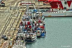 IMG_6079 (Mirko Ippoliti) Tags: sea sky water landscape mare barche porto cielo di hdr abruzzo adriatico ortona bellabruzzo