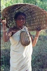 tribal wayanad