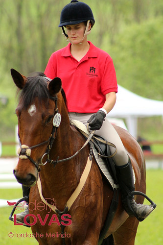 """Transylvania Horse Show 2014 - Díjugratók • <a style=""""font-size:0.8em;"""" href=""""http://www.flickr.com/photos/95148802@N02/14125054953/"""" target=""""_blank"""">View on Flickr</a>"""