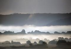 Misty Gwent Landscape (wentloog) Tags: uk sky cloud mist tree green field wales river landscape britain farm cymru cardiff newport caerdydd glamorgan monmouth agriculture usk gwent wentloog stevegarrington