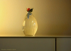 Iittala glass Tapio Wirkkala,  Onion vase (markku mesterton) Tags: glass finland onion iittala wirkkala sailsevenseas