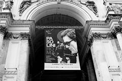 PASOLINI | ROMA