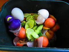 Hanzō 345/365 (alexinatempa) Tags: wales ninja lime rubberduck eggshell compostbin clydach project365 flickr365 oneobject365 hanzō