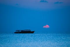 Pink and blue sunset (5ERG10) Tags: pink sunset sea sky sun holiday water silhouette clouds island evening boat seaside nikon holidays asia dusk horizon indianocean peaceful resort april maldives d800 atoll maldive 2014 oneandonly oneonly reethirah  5erg10 sergioamiti