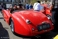 Jaguar XK120 Roadster (fangio678) Tags: classic cars 04 voiture collection coche oldtimer jaguar 06 ancienne roadster 2014 youngtimer xk120 voituresanciennes anglaise chatenois