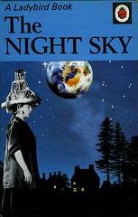 The Night Sky (Kollage Kid) Tags: collage night ladybird ladybirdbook