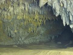 Skocjianske jame (22) (Naturalmentescienza) Tags: grotte jame reka skocjanske timavo sancanziano scanziano