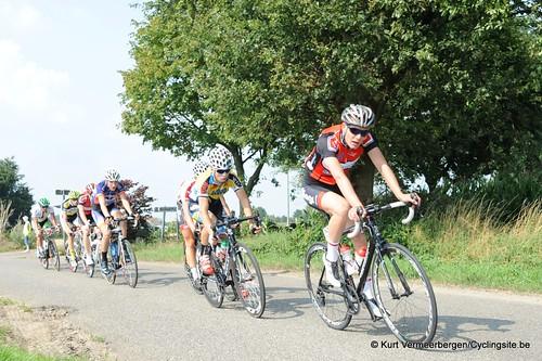 Geel Oosterlo  (114)