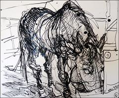 Close-Up of Elvis (Kerry Niemann) Tags: horse inkdrawing apachejunction