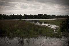 Etang Chaliouvre (Karl-Joris) Tags: rural countryside campagne etang ain rhônealpes dombes bouligneux