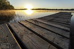 Sunrise with Lake Mist