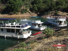 The Worlds Most Recently Posted Photos Of Boatgraphics Flickr - Custom houseboat graphicshouseboatgraphicscom linkedin