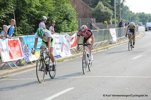Geel Oosterlo  (345)