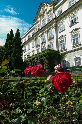 Schloss roses