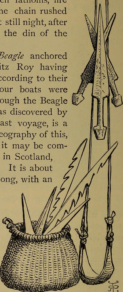 "Image from page 263 of ""Journal of researches into the natural history and geology of the countries visited during the voyage round the world of H.M.S."