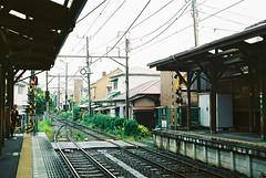 (yuwy*) Tags: japan kamakura natura kanagawa classica