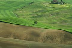 IMG_3351 (mauro muscas) Tags: erba paesaggio valorcia cretesenesi