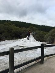 Lady Knox Geyser (eyair) Tags: ashmashashmash rotorua nz newzealand waiotapu thermalwonderland ladyknox geyser