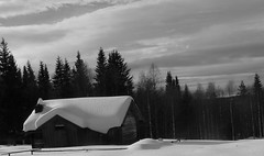 The Shack (jondewi52) Tags: black blackandwhite clouds cloud frozen forest architecture building landscape monochrome nature outdoor outdoors snow sky tree trees winter white wood woods