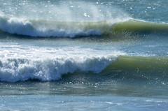 2017_03_05_waves (giopuo) Tags: onda wave wind sea spray schiuma foam roughness rolling mare beach storm cavalloni