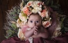 DSC_4102 (Claire Jaggers Photography) Tags: newborn baby 3months portrait monolight sidelight 2875mm nikond700