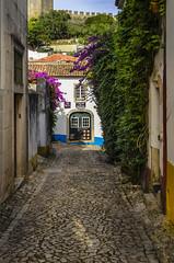 Obidos Street 543 (_Rjc9666_) Tags: arquitectura colors extremadura flor flowers flowersplants nikkor35mm18 nikond5100 obidos places portugal street urbanphotography coblestone ©ruijorge9666 óbidos leiriadistrict pt 1737 543