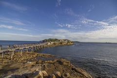 Bare Island (pradeep2471989) Tags: castle laperouse beach beachesofaustralia photogenic bridge bareisland cloudscape