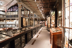 Pitt Rivers Museum (Canon_Snapper) Tags: pittriversmuseum pittrivers oxford museum museums anthropology history historiccollections
