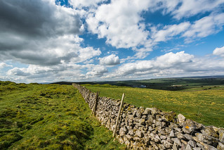 Dry-Stone Wall...