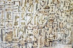 Hieroglyphic text (konde) Tags: mummymask ancient hieroglyphs meir middlekingdom