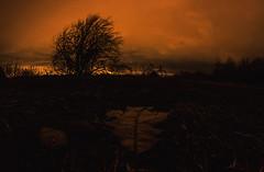 Restant d'automne (Frédéric T. Leblanc) Tags: sky orange night light bike fixie grainy canon t3i cinema cinematic filmlook long exposure longexposure sthilaire quebec canada teen teenage teenager amateur trippy fisheye 8mm rokinon
