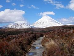 NEUSEELAND   Tongariro Nationalpark