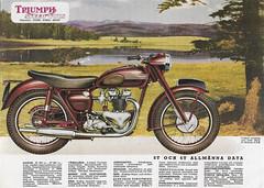 Triumph Speed Twin (Andersannipal) Tags: motorcycle triumph lakemary arizona usa speedtwin 5t 6t preunittwin