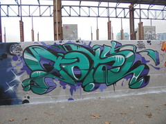 149 (en-ri) Tags: tots crew verde viola arrow nero parco dora sarah linda sir2 cowboy torino wall mro graffiti writing