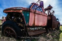 McLeans 4-2017-3 (Terry Babij) Tags: autos cars hamiltoncameraclub mcleansautowreckers milton outing spring wrecks