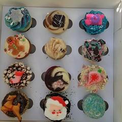 405 (devbydylan) Tags: cupcakes christmas assortment sugar candy holiday