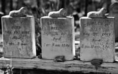 L, D & C (Joe Josephs: 3,122,834 views - thank you) Tags: california californiacoast cambria joejosephs photojournalism â©joejosephs2017 graves cemetary cemetaries dead children blackandwhitephotography blackandwhite ©joejosephs2017 grief