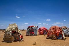 Somaliland_Mar17_0643 (GeorginaGoodwin) Tags: georginagoodwingeorginagoodwinimageskenyakenyaphotojournalistkenyanphotojournalist kenyaphotographer eastafricaphotographer kenyaphotojournalist femalephotographer idps refugees portraits portraitphotographer canon canon5dmarkiii canonphotos drought famine somalia somaliland malnutrition foodsecurity donorfunding aid foodaid wash health sanitation hornofafrica