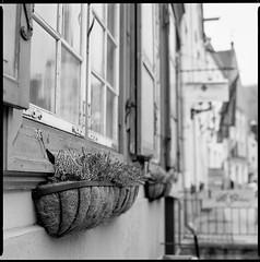 Old Town Streets (Ordinary Extraordinary World) Tags: estonia estland eesti tallinn oldtown bw blackandwhite monochrome film analog medium mediumformat mf bronica sqai zenzanonps 80mm kodak tmax 400 ilfotechc square filmdev:recipe=11442 kodaktmax400 ilfordilfotechc film:brand=kodak film:name=kodaktmax400 film:iso=400 developer:brand=ilford developer:name=ilfordilfotechc tmy2