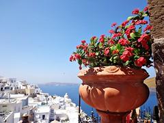 SANTORINI - FIRA - (Grecia) (cannuccia) Tags: paesaggi landscape panorami grecia santorini fira isole vasi